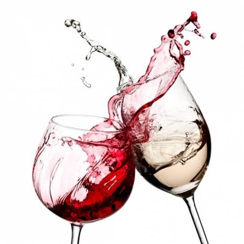 vino-roma